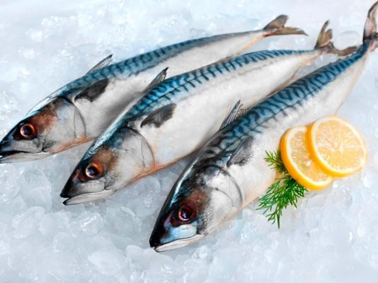 الأسماك وثمار البحر تساعدك على الإنجاب