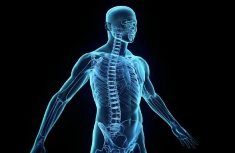 كيف ستتطور أجسادنا خلال السنوات المئة القادمة؟