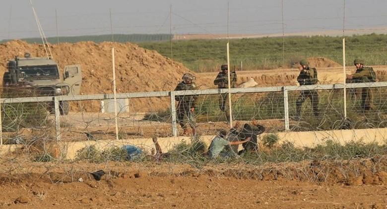 الاحتلال يزعم اعتقال شاب بزعم محاولته التسلل جنوب قطاع غزة