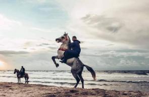 جمالية لشاب يمتطي الخيل على شاطئ بحر غزة
