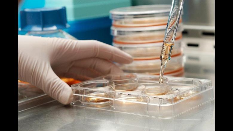 اكتشاف مضاد حيوي داخل الأنف البشري