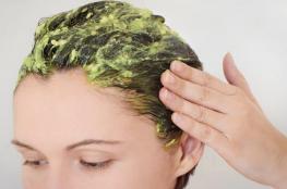 الأفوكادو صديق شعرك في فصل الخريف