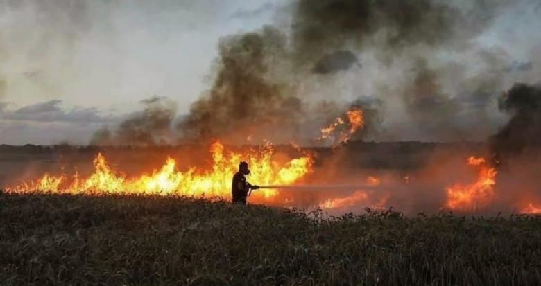 احتراق 600 دونم في غلاف غزة بفعل الطائرات الورقية