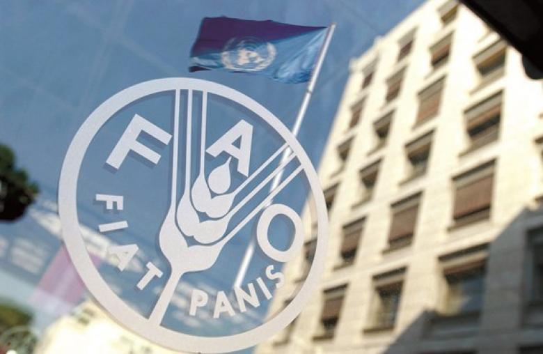 """""""فاو"""" تعلن عن مؤتمر وزاري استثنائي لدعم وكالة """"الأونروا"""""""