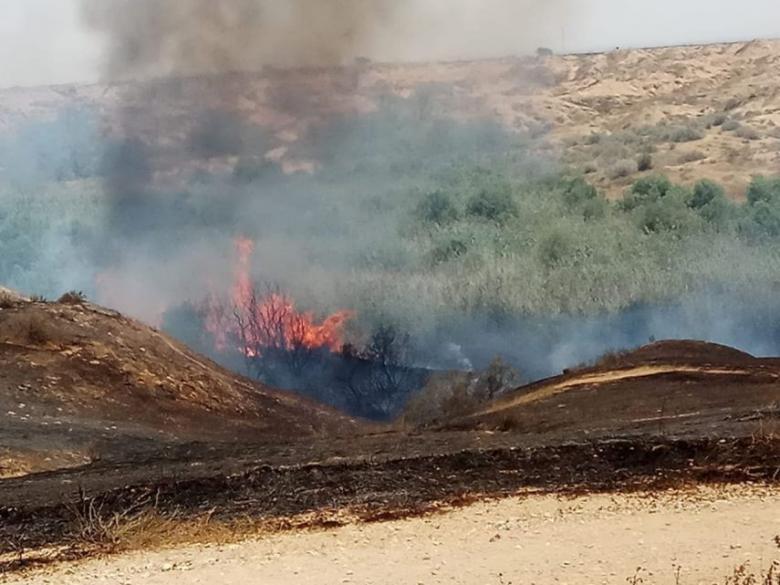 اندلاع حريق في أحراش الاحتلال شرق غزة