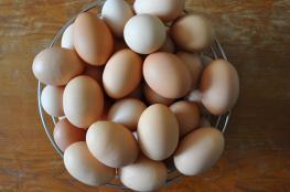 فوائد غنية لقشر البيض تعرف عليها