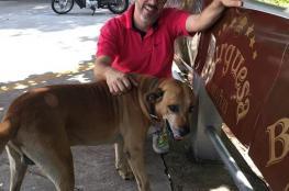 كلب يصبح أفضل موظف في محطة وقود برازيلية