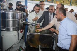 """""""الزراعة"""" تفتتح موسم قطف الزيتون وتشغيل المعاصر بغزة"""