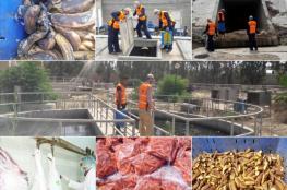 بلدية خان يونس تتلف 4,2 طن أغذية فاسدة