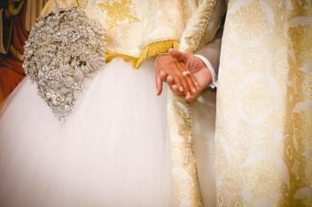 تركيا.. حفل زفاف في ملجأ للحيوانات