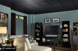 أسباب تدعوك لاختيار اللون الأسود لسقف منزلك