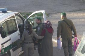 الاحتلال يعتقل فتاة مقدسية بالبلدة القديمة