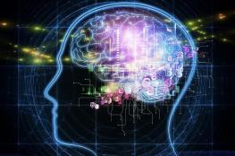 """دراسة مذهلة: الدماغ يخزن ذكريات بحجم """"ألف تريليون بايت"""""""