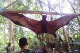خفاش الثعلب.. أكبر خفاش في العالم