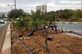 بلدية رام الله تشرع بتنفيذ مشروع استخدام المياه المعالجة لري المزروعات