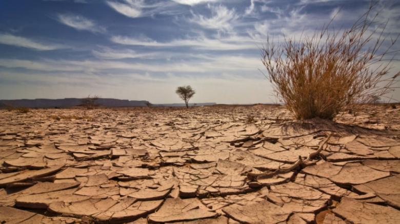 تغير المناخ يزيد الوفيات