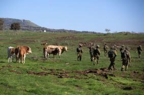 دعوة إسرائيلية لفرض السيادة على الجولان والتحالف مع الأكراد