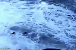 سيلفي الأمواج القاتل في البرازيل