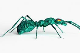 """""""الروبوت النملة"""" يستطيع القفز والتواصل والعمل الجماعي"""