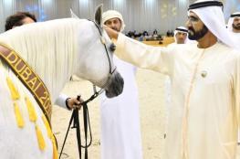 على ماذا أنفق حاكم دبي 4.4 مليون دولار بينما اقتصاد الإمارات ينهار؟!