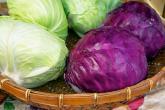 14 نوعاً من الأطعمة لا تزيد الوزن