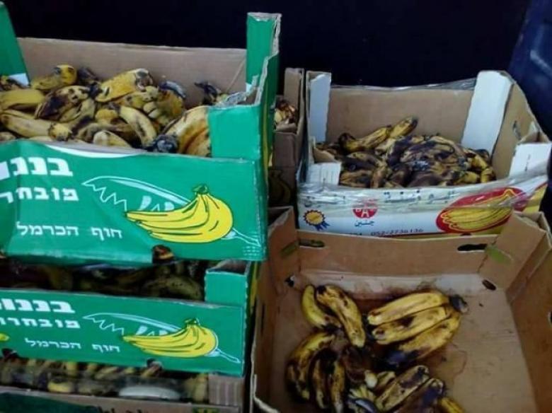 ضبط 200 كغم من الموز الفاسد في جنين
