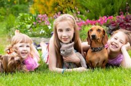 دراسة: الحيوانات الأليفة تحمي الأطفال من الحساسية والسمنة