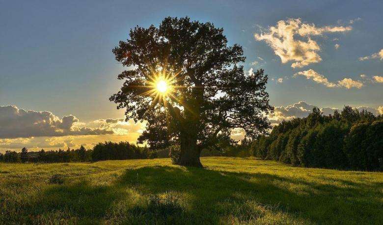 اليسر والسعة.. من سمات الحياة الروحية في الإسلام