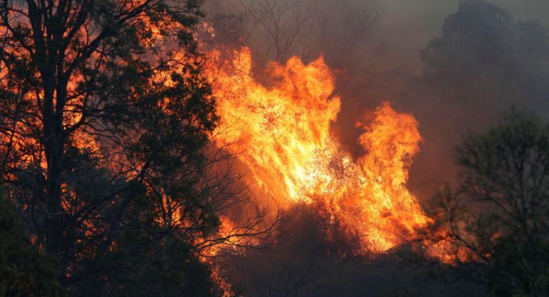 أستراليا تفقد الاتصال بطائرة تشارك في إخماد حرائق الغابات