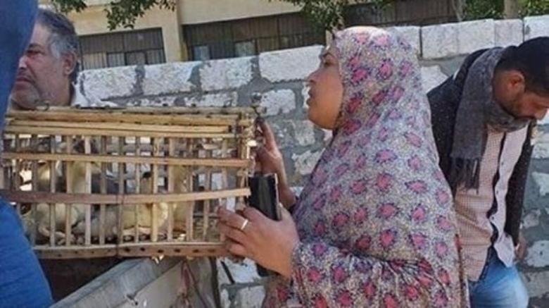 """توزيع """"بط"""" على أسر مصرية يثير سخرية مواقع التواصل"""