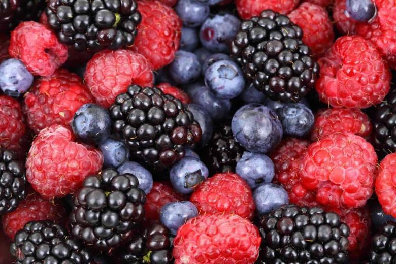 5 أطعمة تحصن القلب والشرايين من الأمراض الخطيرة