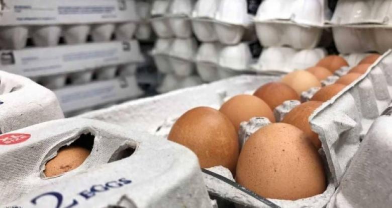 الأسباب الصحيّة لتناول البيض