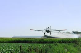 مبيدات الاحتلال تكبّد المزارعين خسائر فادحة