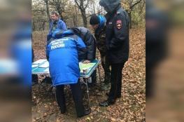 روسيا.. العثور على طفلة تاهت في الغابة لأيام