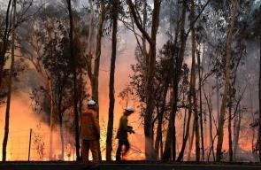 رجال الإطفاء يكافحون حرائق الغابات في أستراليا