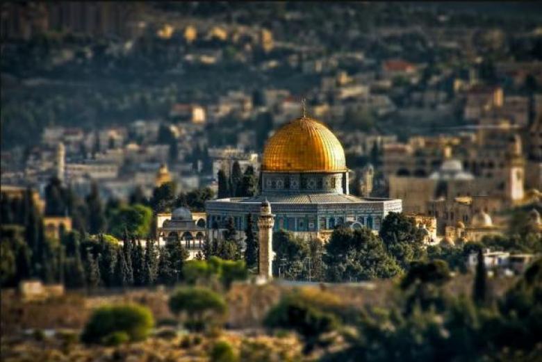 حسين: فلسطين شاغلتي التي لا شغل لي سواها