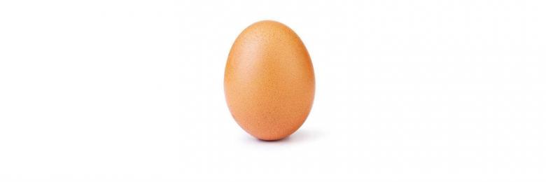 بيضة تعري تفاهة العالم!