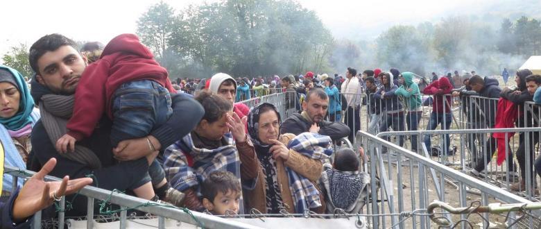 السلطات الجزائرية تحتجز أكثر من 170 فلسطينيًا من غزة