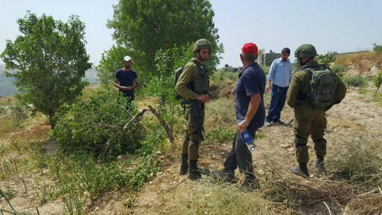الاحتلال يقطع عشرات الأشجار شرق القدس المحتلة