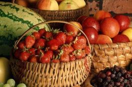 لعقل صحي ونشيط.. ما الأطعمة الواجب تناولها؟