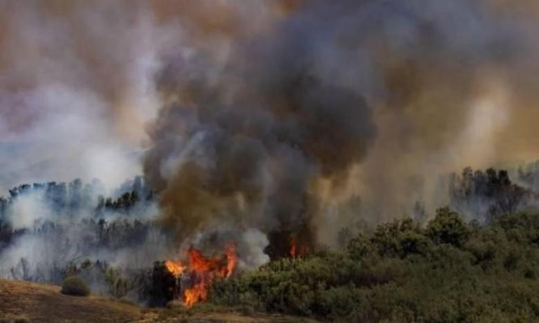 حريقان في غلاف غزة بفعل بالونات حارقة