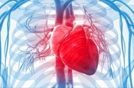 قواعد ذهبية لتحافظ على صحة قلبك
