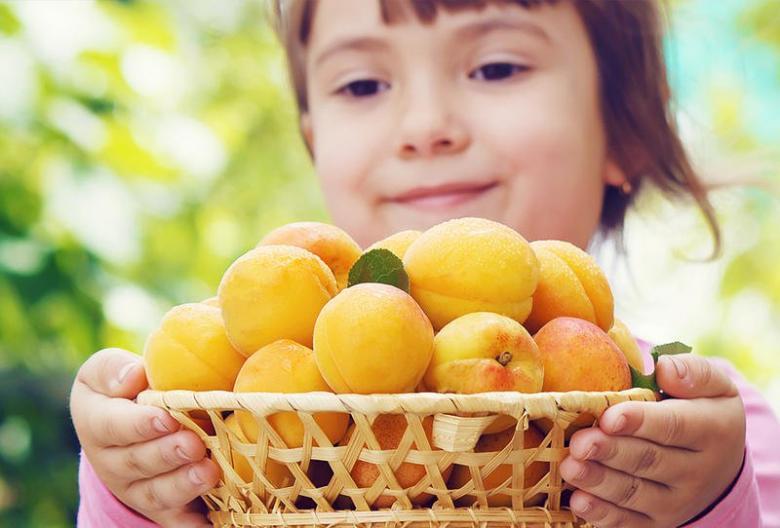 فوائد المشمش للأطفال