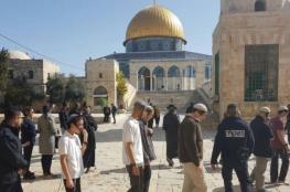 مائة مستوطن وطالب تلمودي يقتحمون المسجد الأقصى