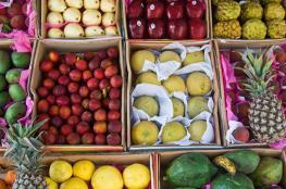 12 نوعاً من الأطعمة تشحن المخ وتقوي الذاكرة