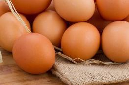 بيضة واحدة يوميًا تحمي الأطفال من التقزّم ونقص الوزن