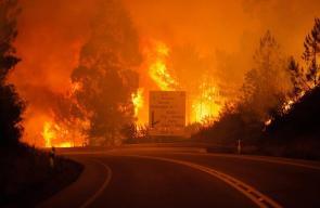 حريق غابات البرتغال