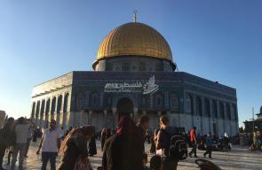 من المسجد الأقصى المبارك