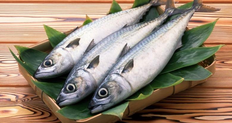 """دراسة: الأسماك """"الزيتية"""" تقلل فرص الوفاة المبكرة"""