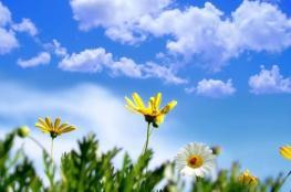 الطقس: حالة محدودة من عدم الاستقرار الجوي